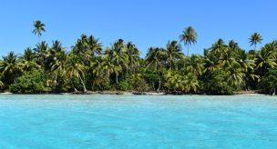 Polynesian waters